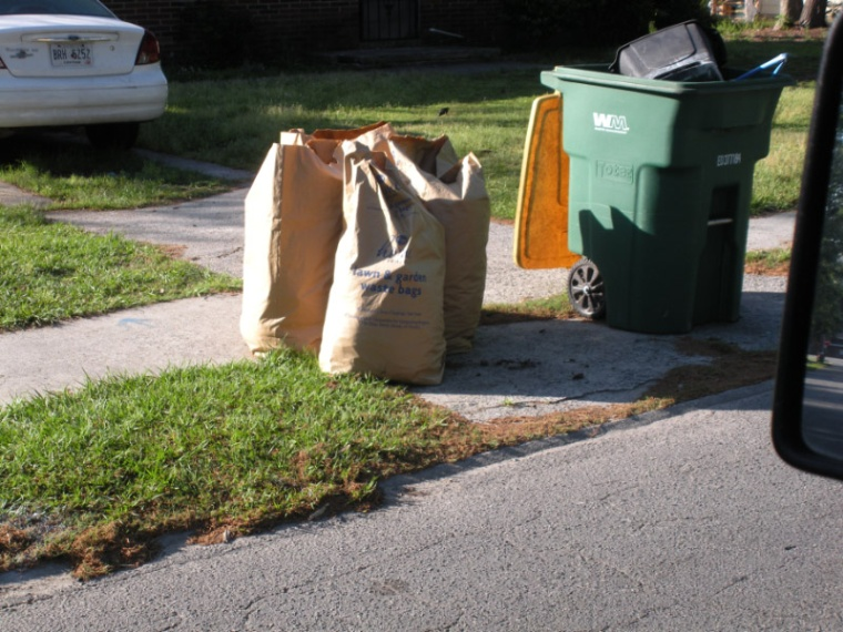 Don't Rake Leaves or Grass Into Streets or Ditches